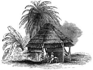 [PD] wikimedia